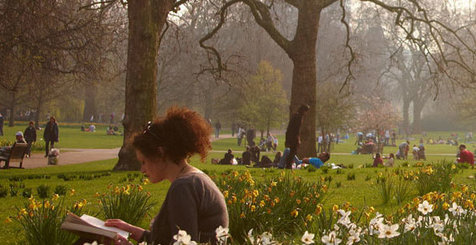Reading in a London Park