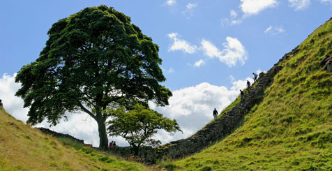Explore the Countryside of Northumberland