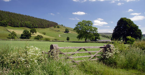 Explore the Yorkshire Dales