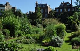 Chelsea Physic Garden - London (c)Nick Bailey 264x168
