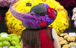 RHS Chelsea Flower Show 2014 - London (c)RHS, Justin Tallis 264x168