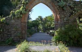 Tresco Abbey Garden - Isles of Scilly (c) VisitEngland 264x168