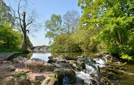 Make a real difference with a working holiday at Clumber Park
