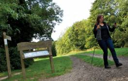 Go on a 'legless ramble' through East Sussex's countryside