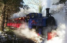 See in the Spring Equinox at Perrygrove Railway