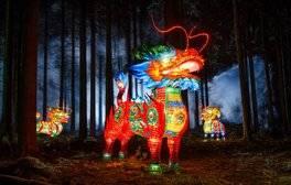 Marvel at the Longleat Festival of Lights