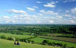 Escape to Surrey's hills and English gardens