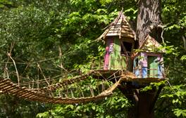 Get befuddled at BeWILDerwood