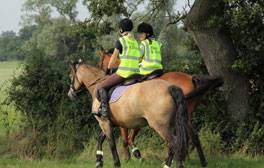 Hack across Wiltshire countryside with Rein and Shine